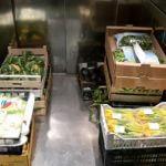 consegna frutta&verdure